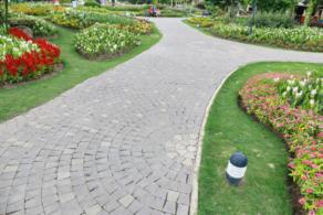 greenline garden services 3521875740